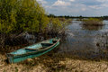 An old boat on the swampy bank of the former river Royalty Free Stock Photo