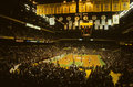 Old Boston Garden Royalty Free Stock Photo