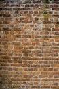 Viejo pared