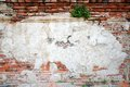 The old brick wall for background Royalty Free Stock Photography