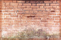 Old brick wall cracked concrete vintage background Royalty Free Stock Photos