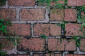 Old brick  wall cracked vintage background Royalty Free Stock Photo