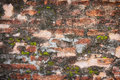 Old brick wall grunge background texture Royalty Free Stock Image