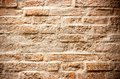 Old brick wall look pretty good Stock Photography