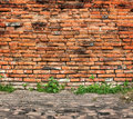 Old brick wall and sidewalk Stock Image