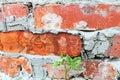 Old bricks wall close Royalty Free Stock Photo