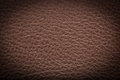 Old brown leather background. texture Royalty Free Stock Photo