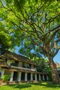 Old building under the big green tree beautiful Stock Photography