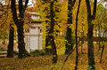 Old building in the woods cladire veche padure toamna frunze galbene forest autumn yellow leaves Stock Photos