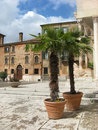 Old buildings and two potted palms Royalty Free Stock Photo