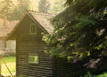 Old cabin in the morning light wooden surrounded by pines Stock Photo