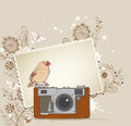 Old camera and bird vector background with Stock Photos