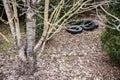 Old car tires at the shrub Royalty Free Stock Photo