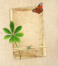 Old cards on canvas green leaf and butterfly Royalty Free Stock Photos