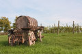 Old cart with wine barrel Stock Photography