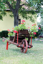 Old carts and red flowers Royalty Free Stock Photo