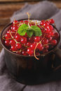 Old cast iron black cup full fresh ripe red currant Royalty Free Stock Photo