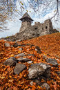 Old castle in autumn forest ukraine europe Stock Photo