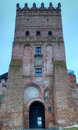 Old castle in town lutsk central tower of the winter Stock Photography