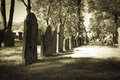 Old cemeteries row of tombstones a in a very cemetery photo done in halloween or seasonal colortones Royalty Free Stock Image