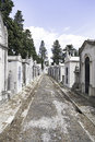 Old cemetery in the city of Lisbon Royalty Free Stock Photo