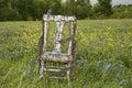 Old chair in field of bluebonnets