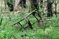 Old chair in the forest Stock Photography