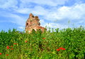 Old church ruins on summer field the red in green meadow setting the red is the early medieval early byzantine basilica built in Royalty Free Stock Image