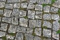 Old cobble stones of a street in lisbon portugal Stock Image