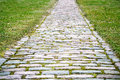 Old cobblestone road with grass around Stock Photo