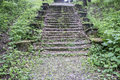 Old cobblestone road and steps overgrown with moss and grass. Royalty Free Stock Photo