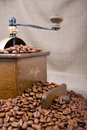 Old coffee-grinder Royalty Free Stock Photo