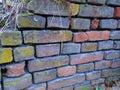 Old color wall of bricks Royalty Free Stock Photo