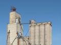 Old concrete grain elevator complex . Royalty Free Stock Photo