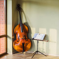 Old contrabass Royalty Free Stock Photo