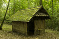 Old cottage old wooden house moss trees Stock Images