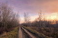 Old country road at the autumn sunset light soft Royalty Free Stock Image