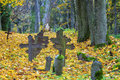 Old crosses on graves with autumn leaves around Royalty Free Stock Image
