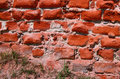 Old Crumbling Brick Wall Royalty Free Stock Images