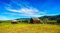 Old dilapidated farm buildings in the Lower Nicola Valley near Merritt Royalty Free Stock Photo