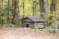 Old dog house in forest Royalty Free Stock Photo
