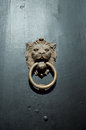 Old door handle on lion shape Stock Image
