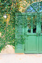 Old door locked with vine cover the door Royalty Free Stock Photo