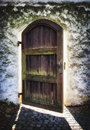 Old door at a park Royalty Free Stock Image