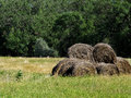 Old dry round hay bales Royalty Free Stock Photo