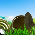Old empty cans on the grass Royalty Free Stock Photo