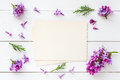 Old empty photo for the inside and frame of fresh lilac flowers Royalty Free Stock Photo