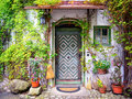 Old entrance door and plants Royalty Free Stock Photography