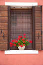 Old European Window / with flowers and shutters Royalty Free Stock Image