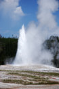 Old faithful an eruption of the geyser in the yellowstone national park usa Stock Image